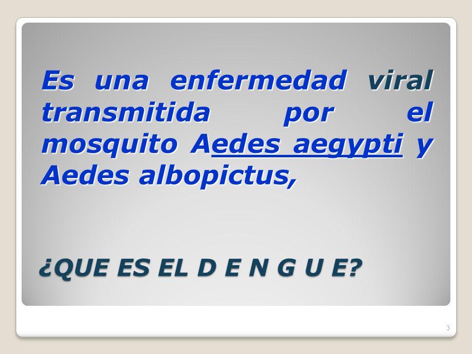 Es una enfermedad viral transmitida por el mosquito Aedes aegypti y Aedes albopictus,