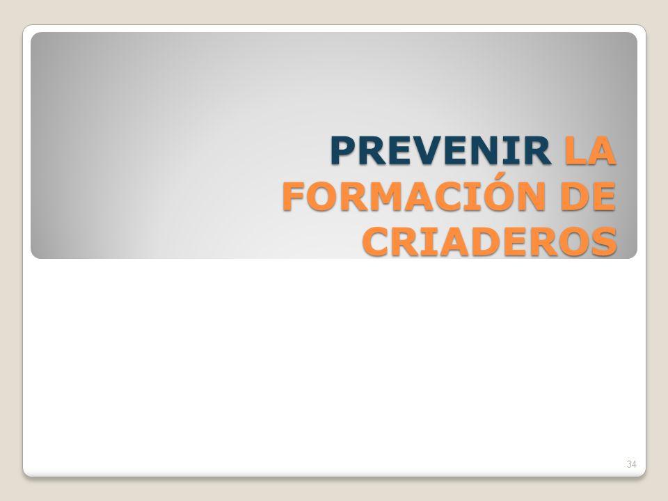 PREVENIR LA FORMACIÓN DE CRIADEROS