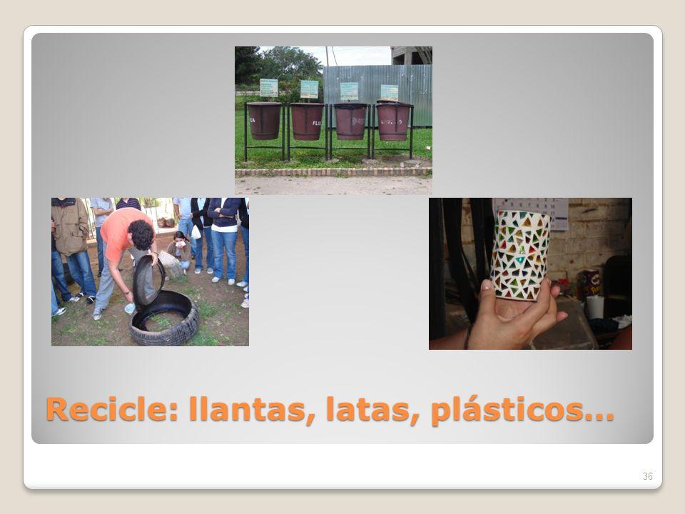 Recicle: llantas, latas, plásticos…