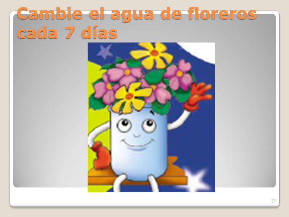 Cambie el agua de floreros cada 7 días