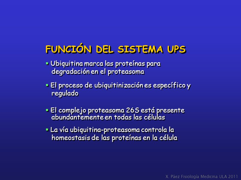 FUNCIÓN DEL SISTEMA UPS