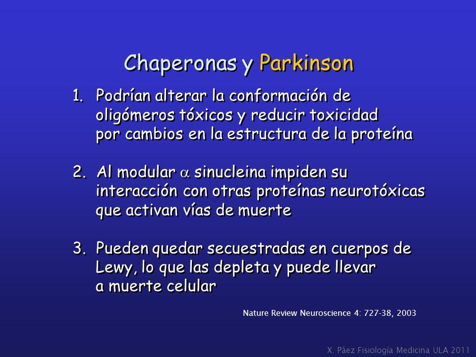 Chaperonas y Parkinson