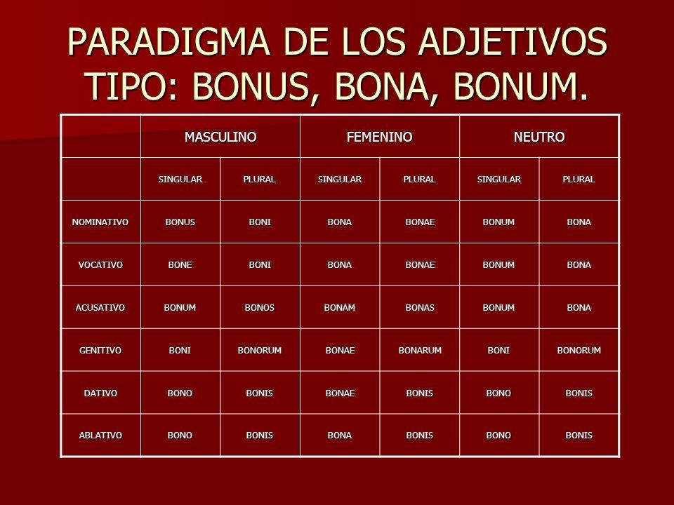 PARADIGMA DE LOS ADJETIVOS TIPO: BONUS, BONA, BONUM.
