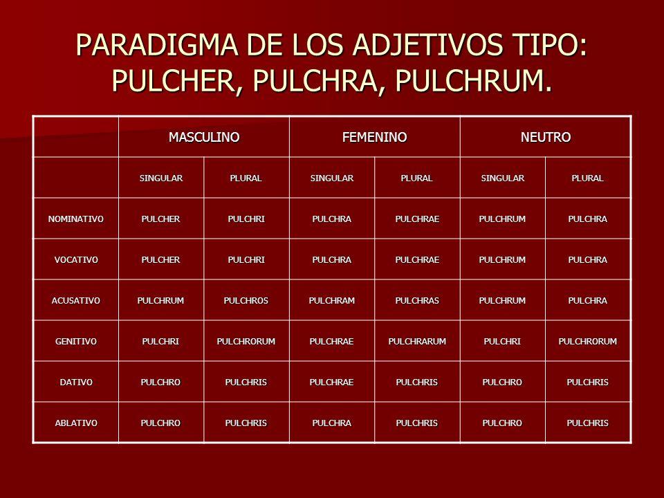 PARADIGMA DE LOS ADJETIVOS TIPO: PULCHER, PULCHRA, PULCHRUM.