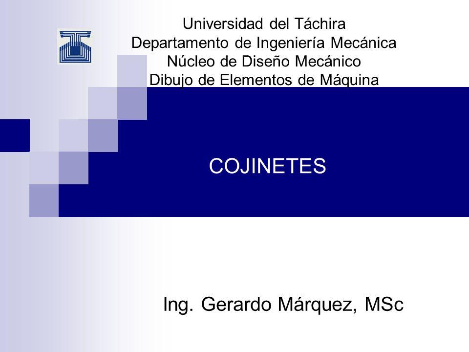 Ing. Gerardo Márquez, MSc