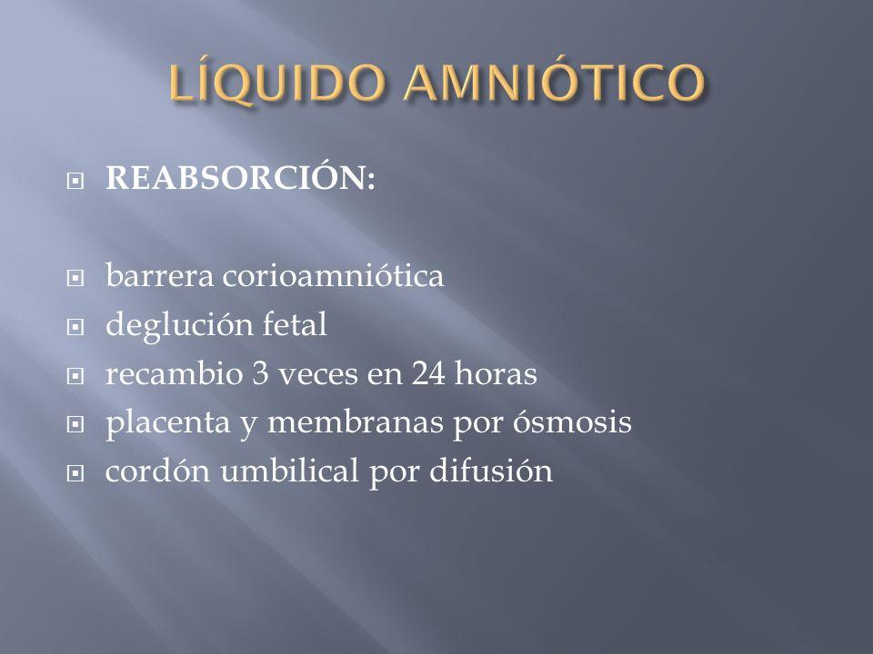 LÍQUIDO AMNIÓTICO REABSORCIÓN: barrera corioamniótica deglución fetal