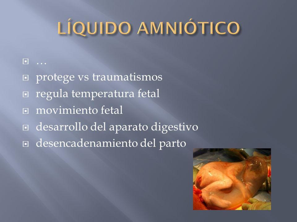 LÍQUIDO AMNIÓTICO … protege vs traumatismos regula temperatura fetal