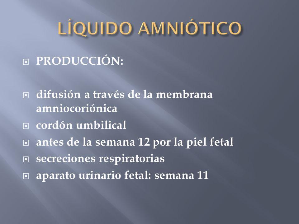 LÍQUIDO AMNIÓTICO PRODUCCIÓN: