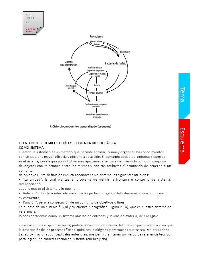 Tema Esquema EL ENFOQUE SISTÉMICO: EL RÍO Y SU CUENCA HIDROGRÁFICA