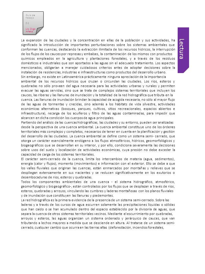 Guia de trabajo D.S. Lic. Olga Arrieta.