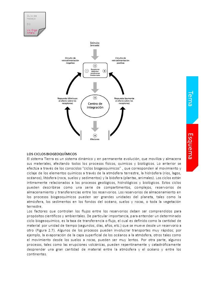 Tema Esquema LOS CICLOS BIOGEOQUÍMICOS