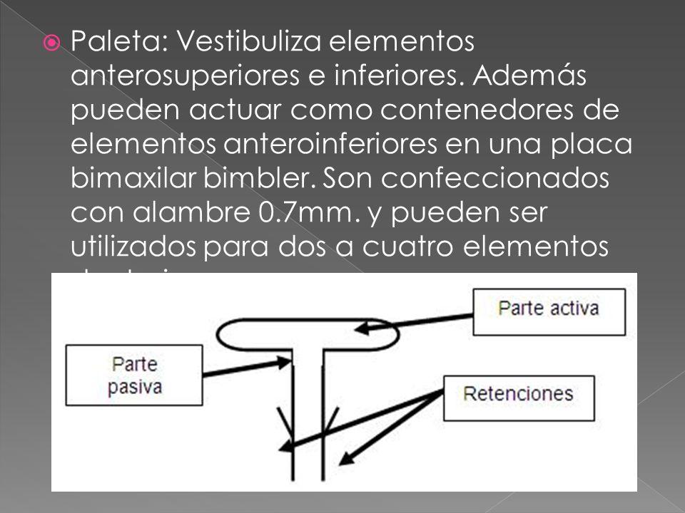 Paleta: Vestibuliza elementos anterosuperiores e inferiores