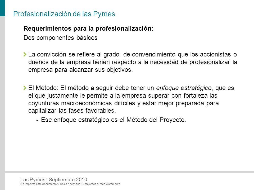 Profesionalización de las Pymes