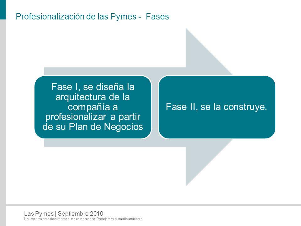 Profesionalización de las Pymes - Fases