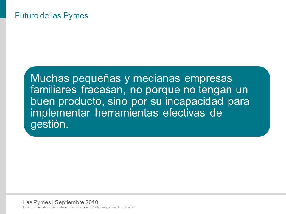 Futuro de las Pymes
