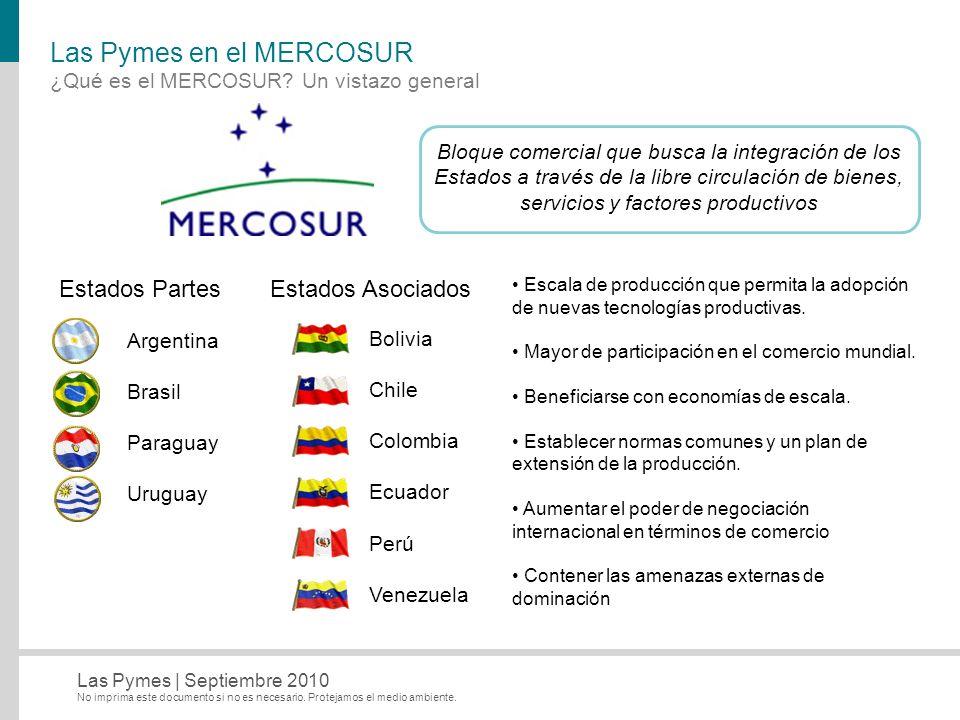 Las Pymes en el MERCOSUR