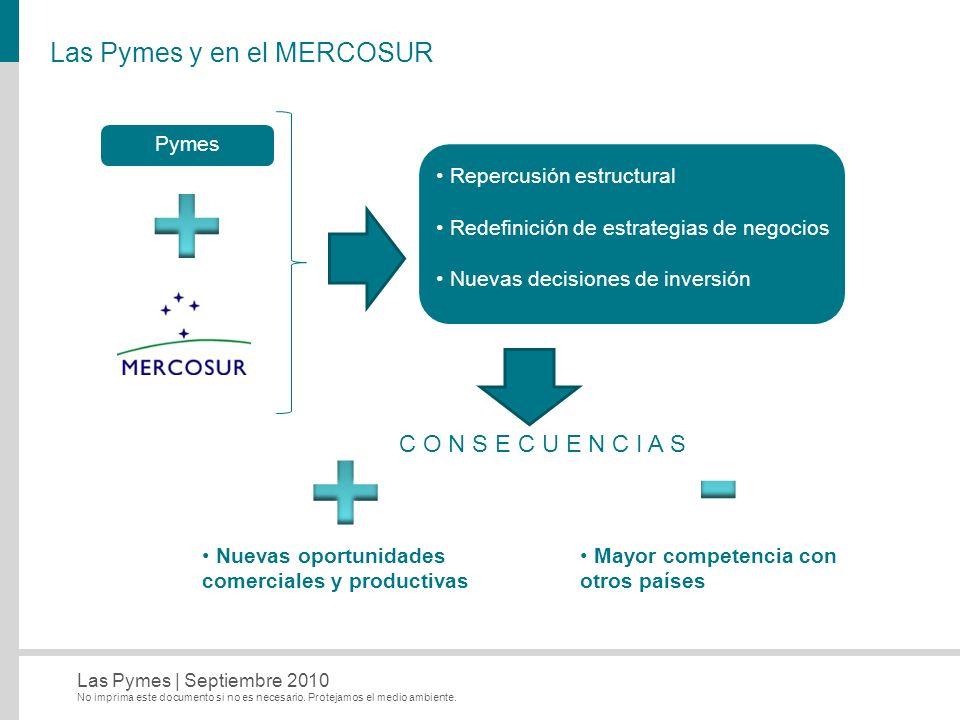 Las Pymes y en el MERCOSUR