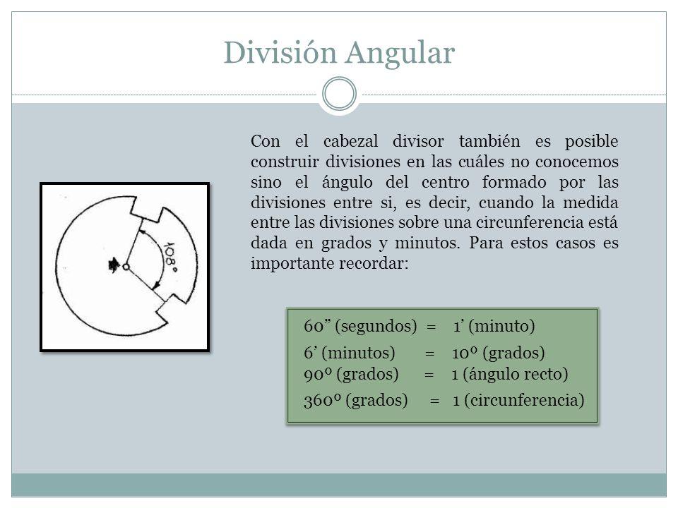 División Angular