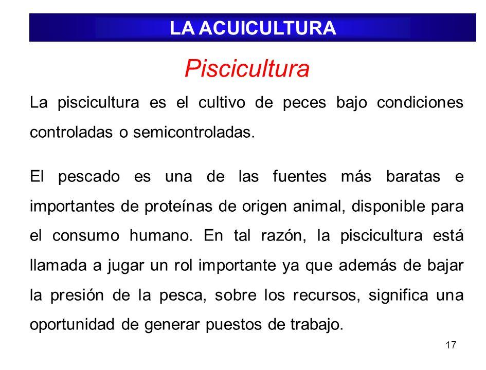 Piscicultura LA ACUICULTURA