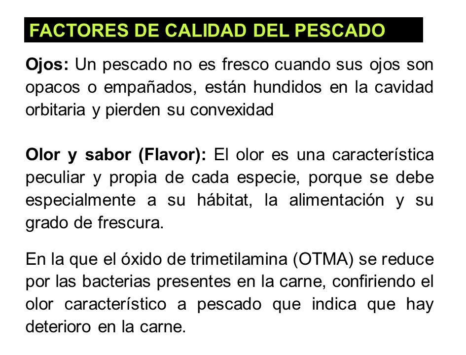 FACTORES DE CALIDAD DEL PESCADO