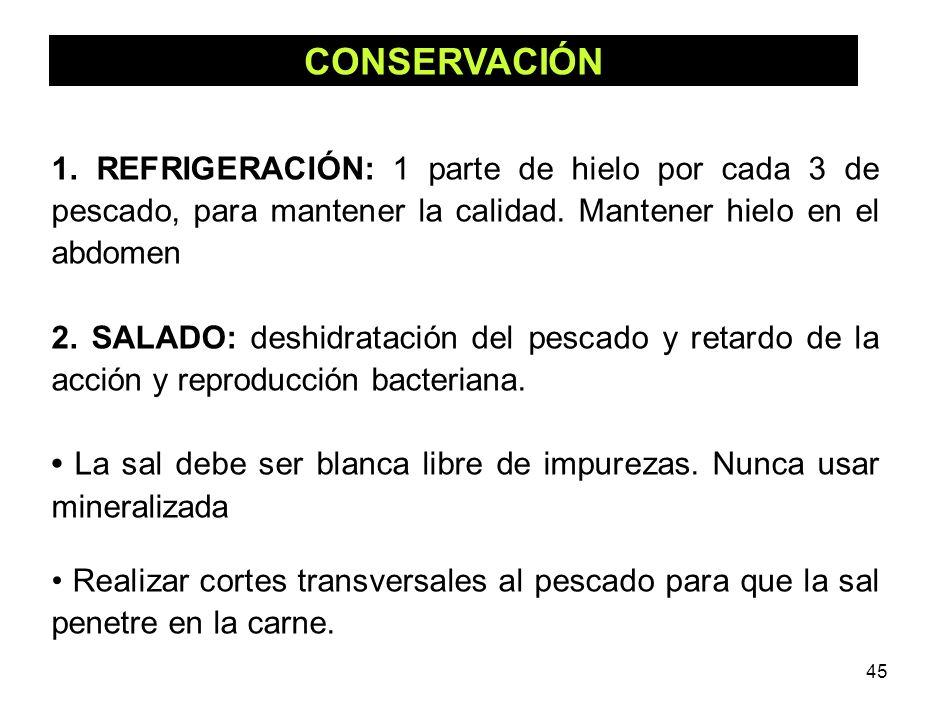 CONSERVACIÓN 1. REFRIGERACIÓN: 1 parte de hielo por cada 3 de pescado, para mantener la calidad. Mantener hielo en el abdomen.