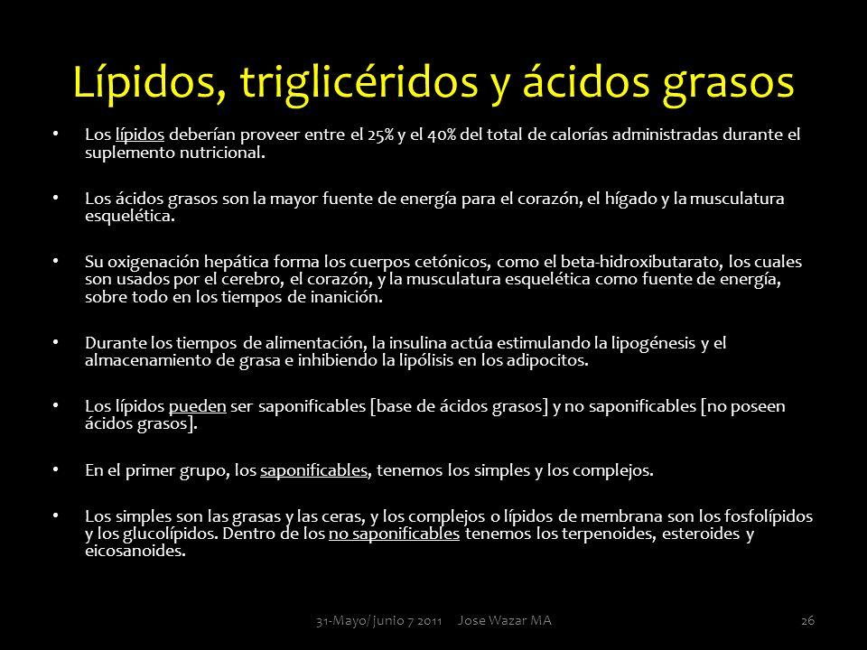 Lípidos, triglicéridos y ácidos grasos