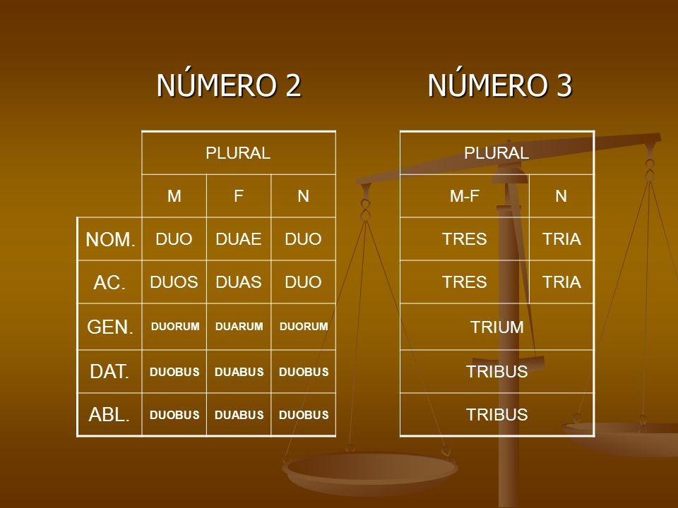 NÚMERO 2 NÚMERO 3 NOM. AC. GEN. DAT. ABL. PLURAL M F N M-F DUO DUAE