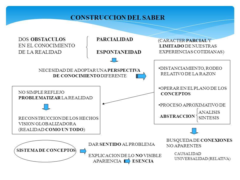 CONSTRUCCION DEL SABER
