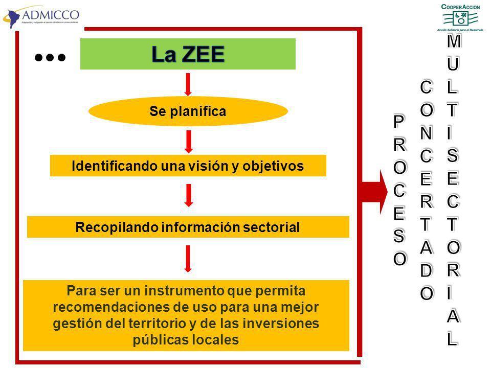 Identificando una visión y objetivos Recopilando información sectorial