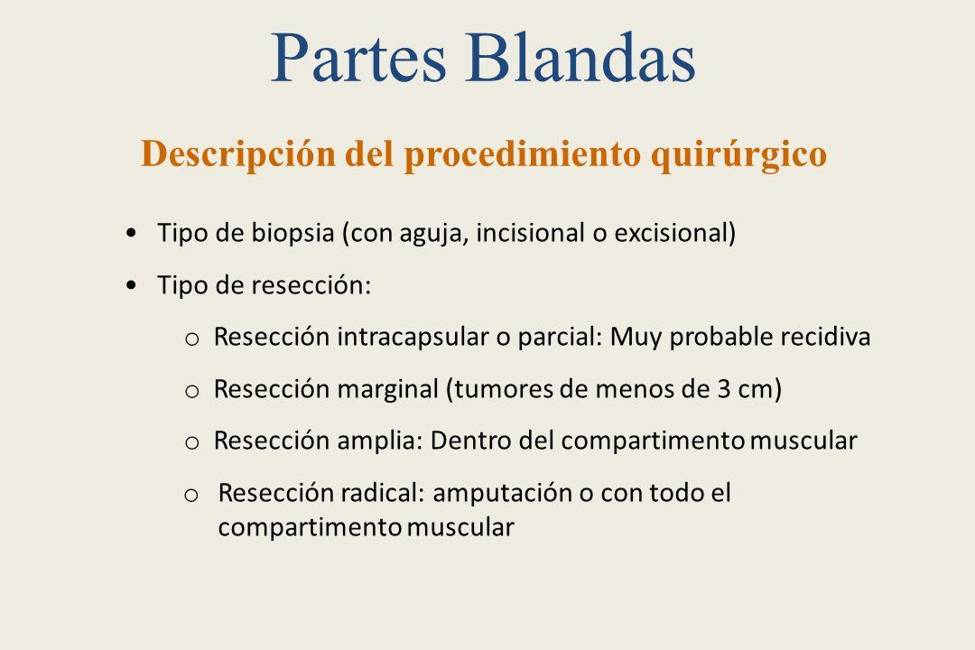 Partes Blandas Descripción del procedimiento quirúrgico