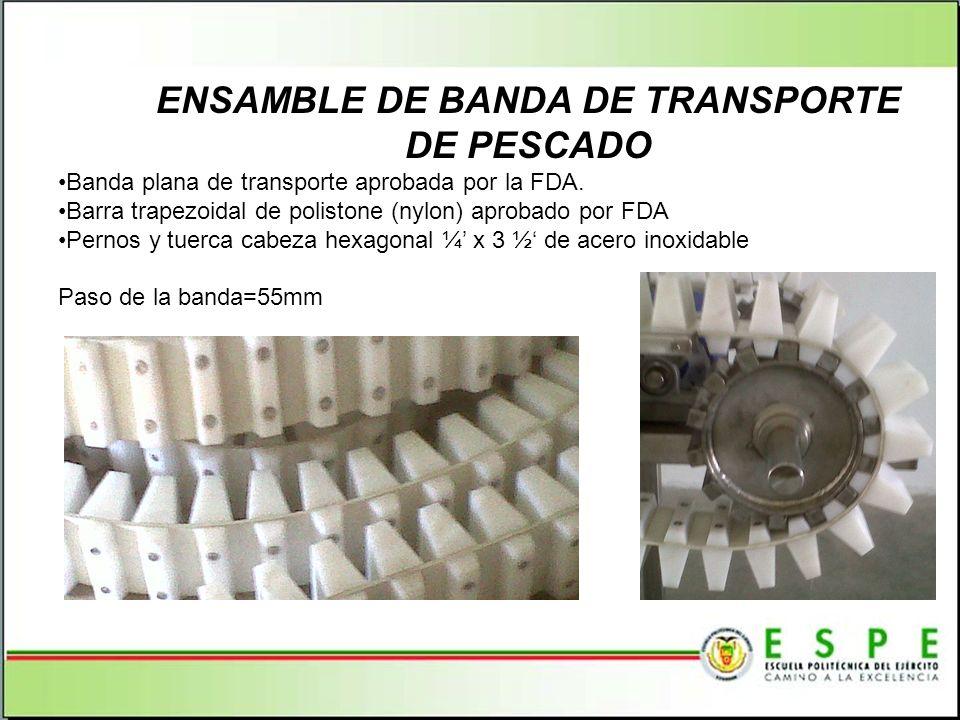 ENSAMBLE DE BANDA DE TRANSPORTE DE PESCADO
