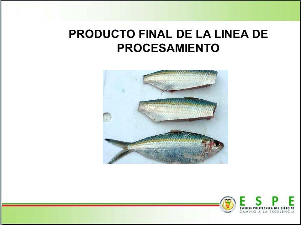 PRODUCTO FINAL DE LA LINEA DE PROCESAMIENTO
