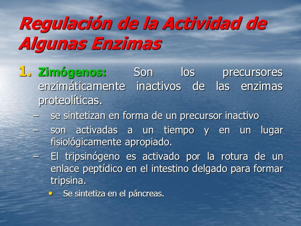 Regulación de la Actividad de Algunas Enzimas