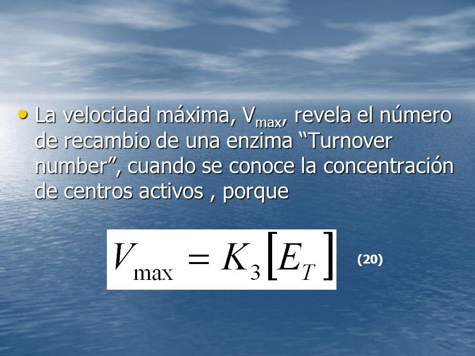 La velocidad máxima, Vmax, revela el número de recambio de una enzima Turnover number , cuando se conoce la concentración de centros activos , porque