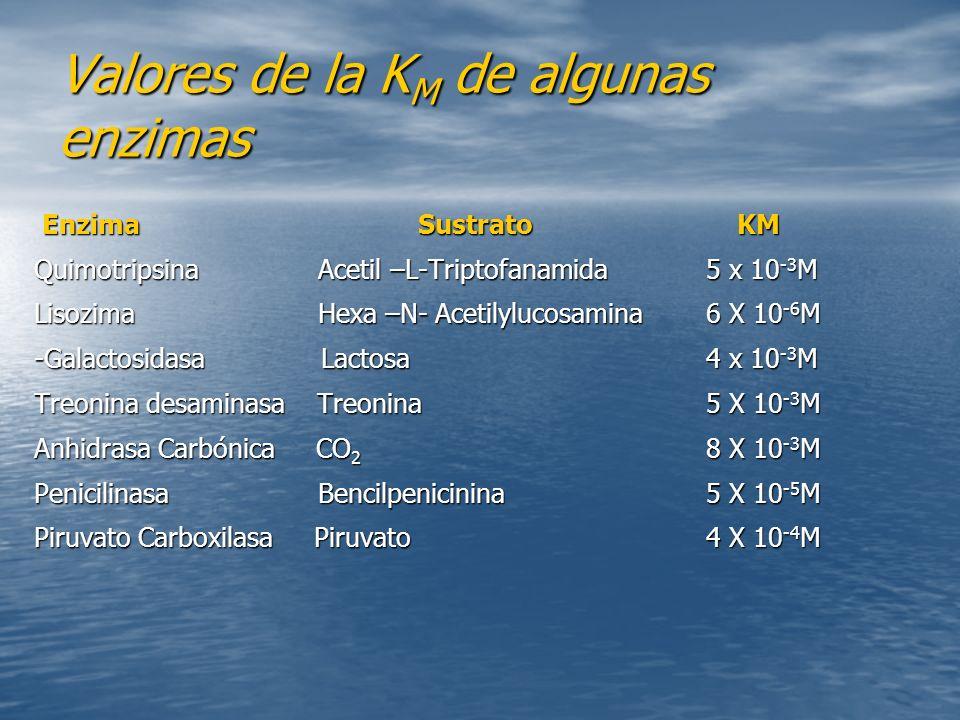 Valores de la KM de algunas enzimas
