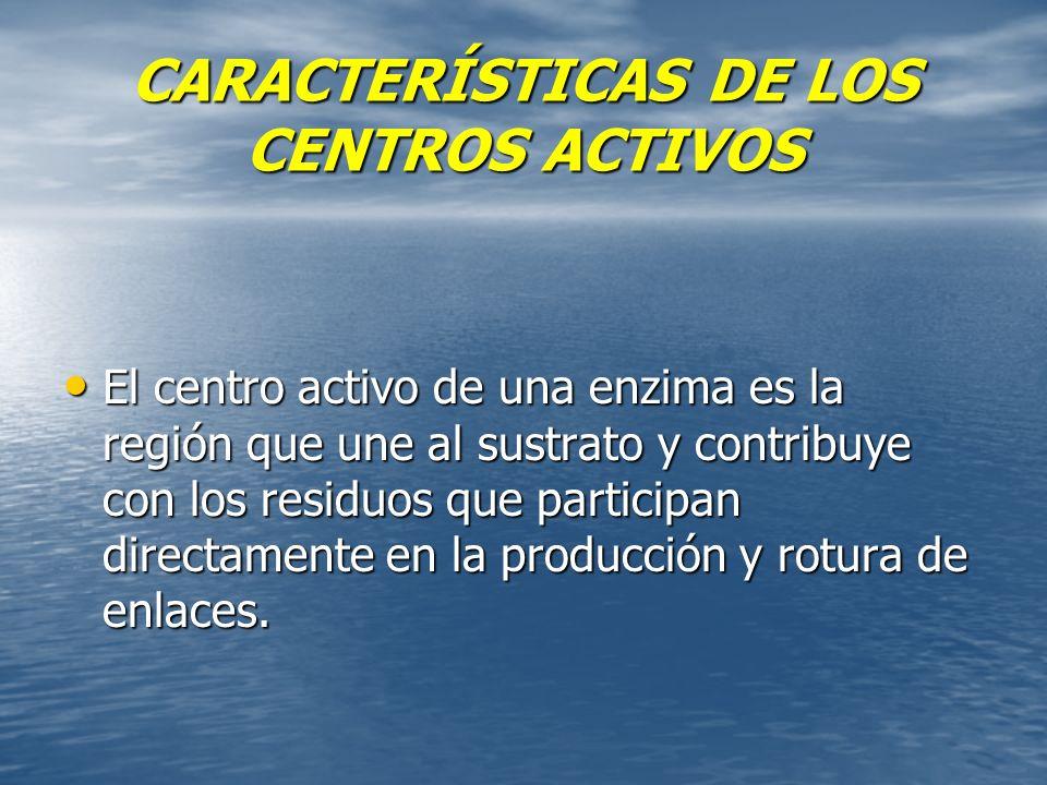 CARACTERÍSTICAS DE LOS CENTROS ACTIVOS