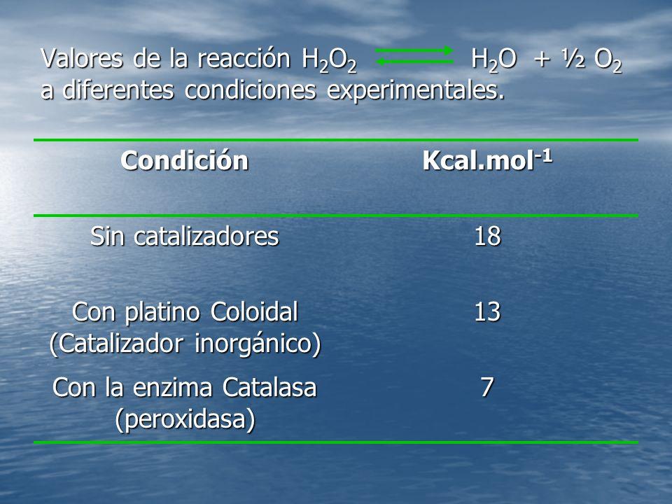 Con platino Coloidal (Catalizador inorgánico) 13