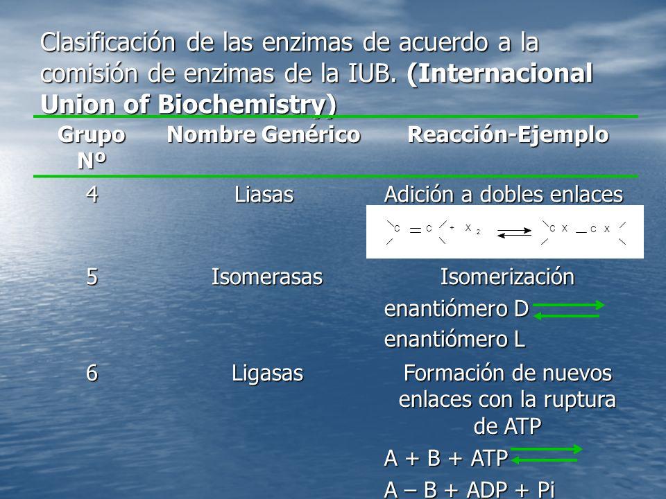 Formación de nuevos enlaces con la ruptura de ATP