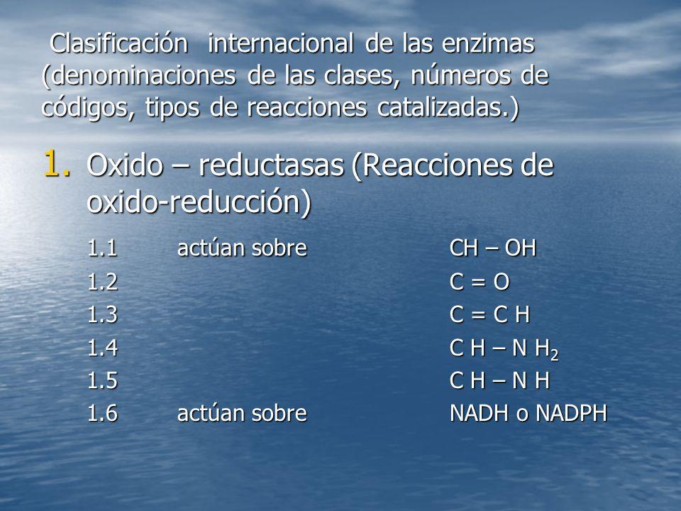 Oxido – reductasas (Reacciones de oxido-reducción)