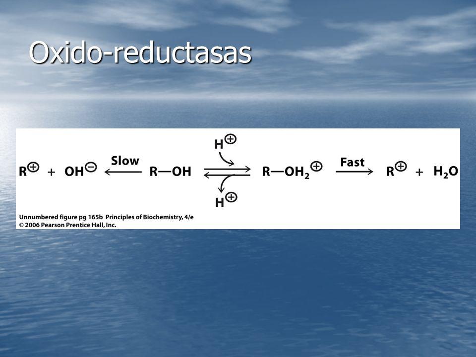 Oxido-reductasas
