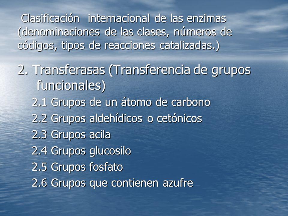 2. Transferasas (Transferencia de grupos funcionales)
