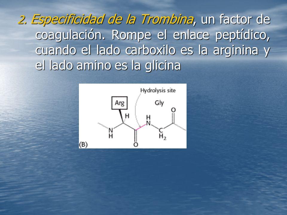 2. Especificidad de la Trombina, un factor de coagulación