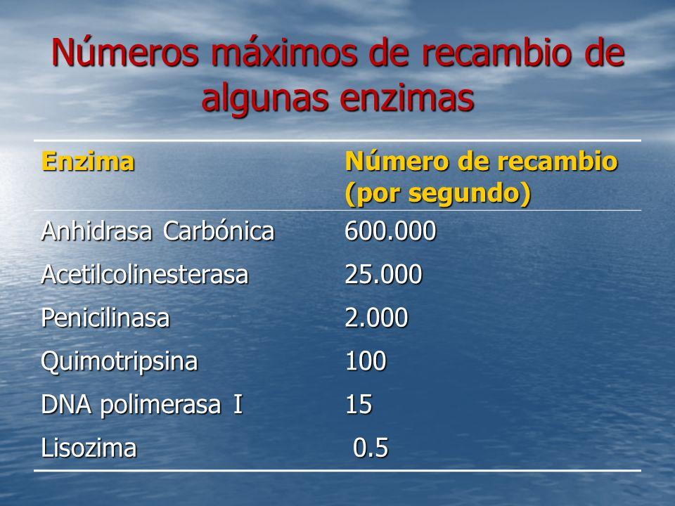 Números máximos de recambio de algunas enzimas