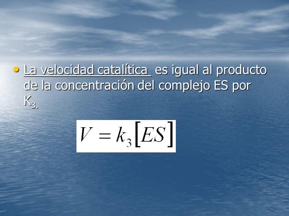 La velocidad catalítica es igual al producto de la concentración del complejo ES por K3.