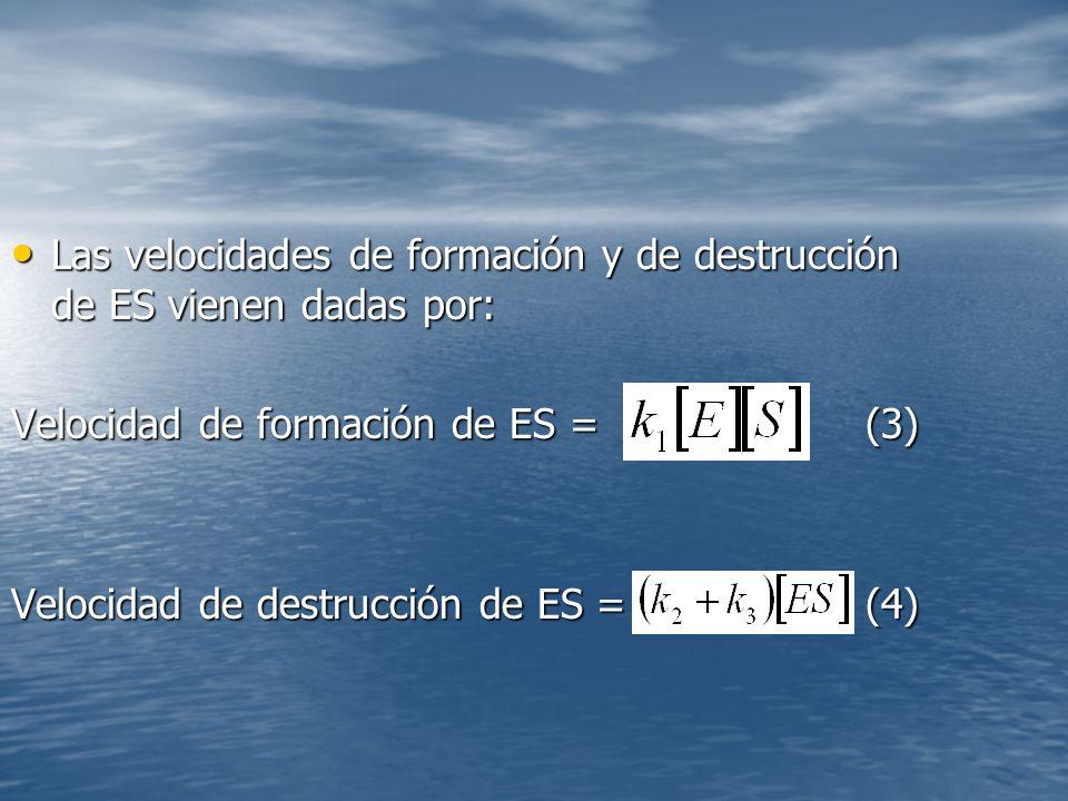 Las velocidades de formación y de destrucción de ES vienen dadas por: