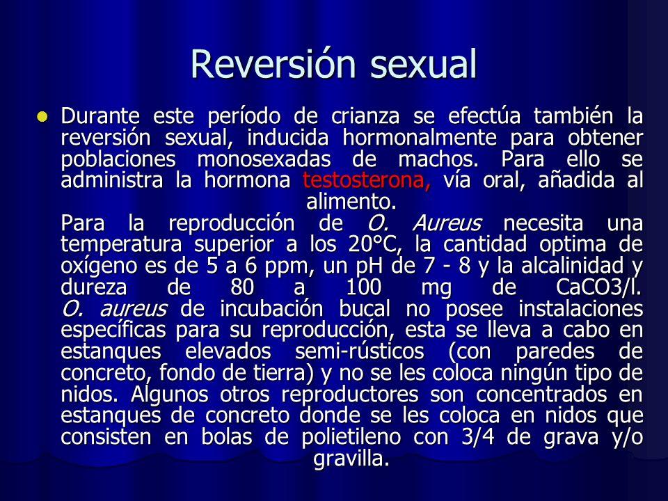 Reversión sexual