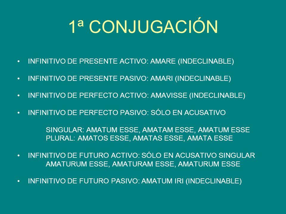 1ª CONJUGACIÓN INFINITIVO DE PRESENTE ACTIVO: AMARE (INDECLINABLE)