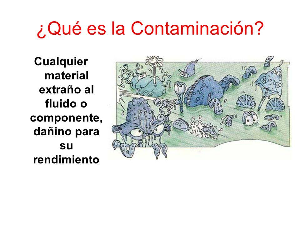 ¿Qué es la Contaminación