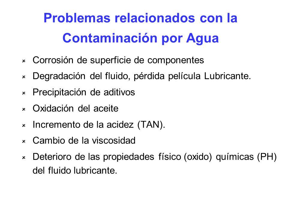 Problemas relacionados con la Contaminación por Agua