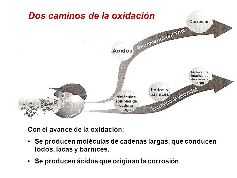 Dos caminos de la oxidación